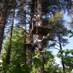 Tree climbing with Adventure Camp